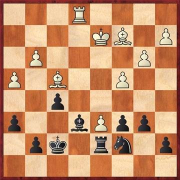 warns-klein-nach-29b7-b6.jpg